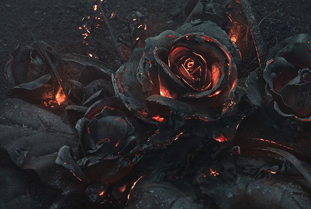 Creating a Photo of a Smoldering Bouquet of Roses