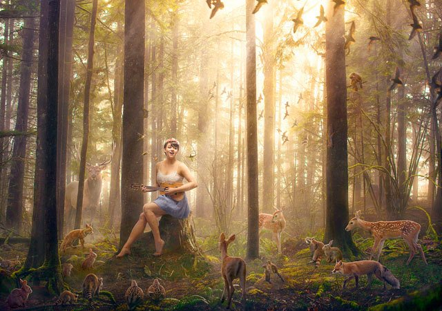 5 Steps to Making a Magical Animal-Filled Forest with Photoshop