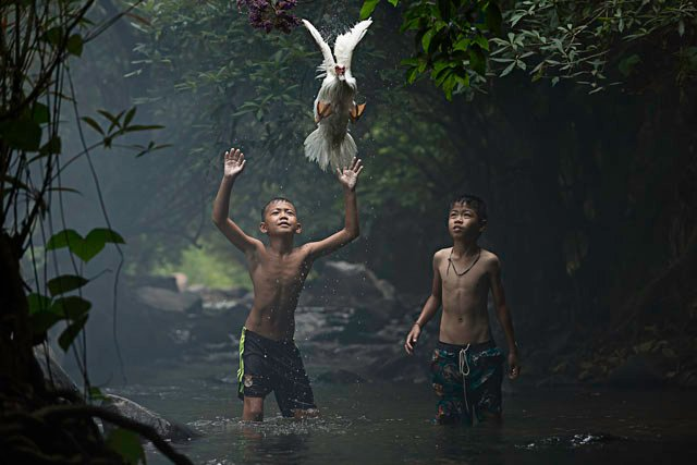 2 boys are trying  to catch a duck at the stream of the waterfall