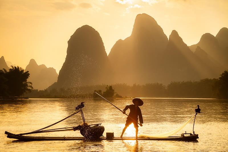 Cormorant Fisherman on the Li