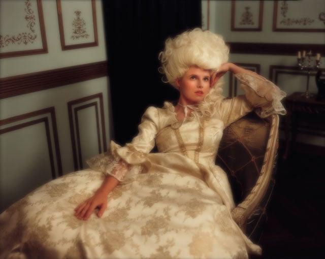 A royal Portrait in the salon 1783