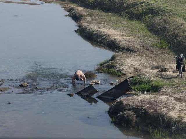 A man in a shallow river.
