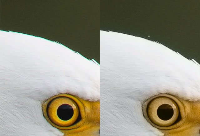 This Photoshop Trick Lets You Easily Fix Color Fringing