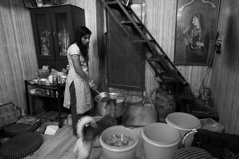 Photo Essay The Dog Savior