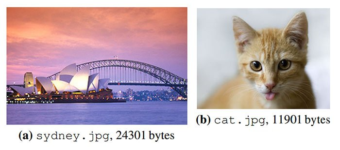 Two of the photos encoded and decoded by the scientists using DNA.