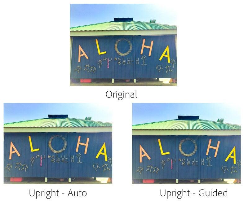 Guided upright - Aloha