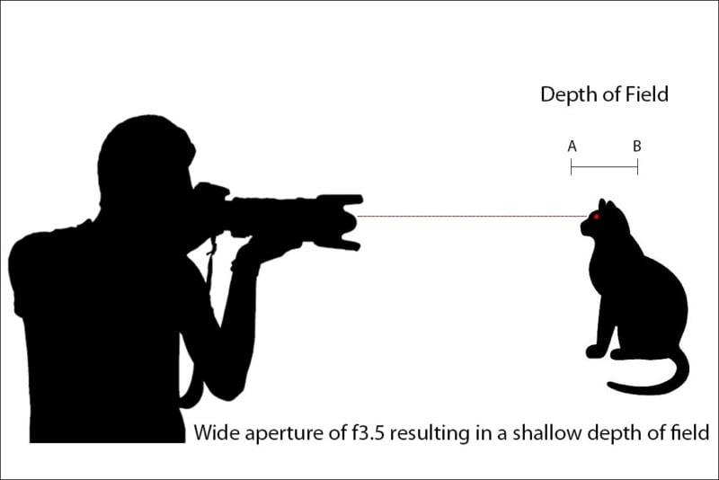 depth-of-field-diagram