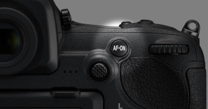 Why You Should Use Back-Button AF on Nikon DSLRs
