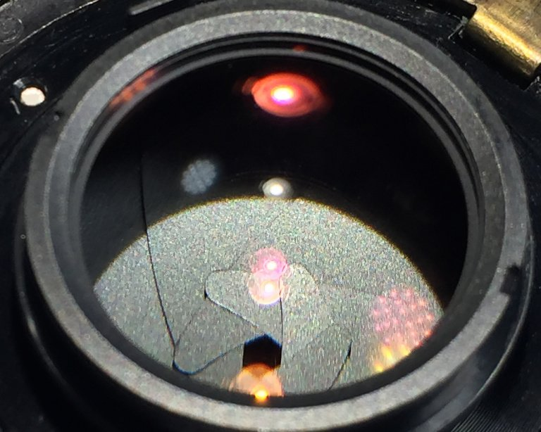 the latest 40c5d 8c6d1 How to Remove Fungus from a Lens