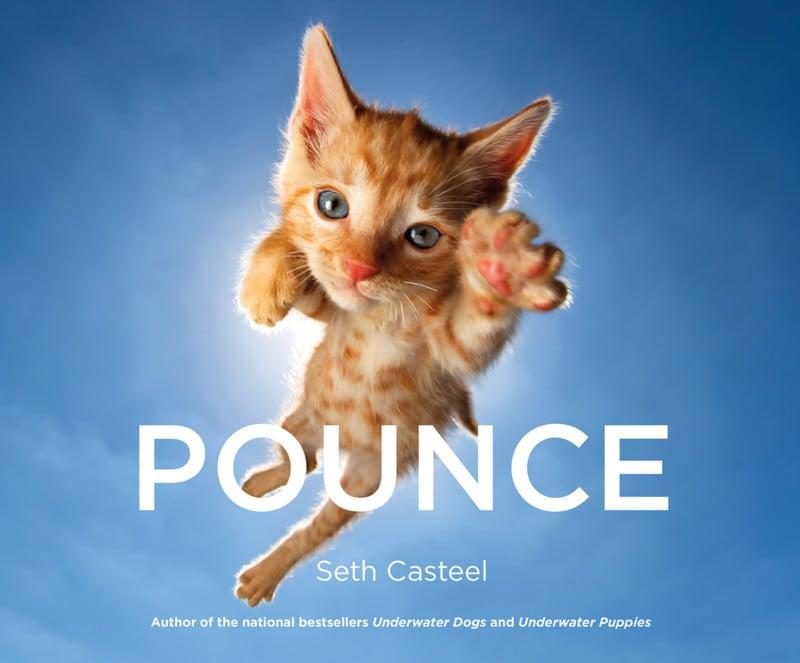 Casteel_Pounce_HC.indd