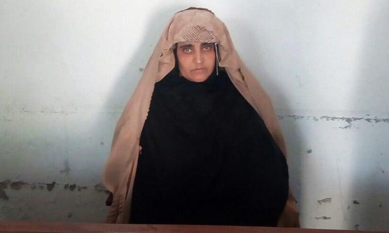 Sharbat Bibi's mugshot while in the custody of FIA Peshawar. Photo by FIA.