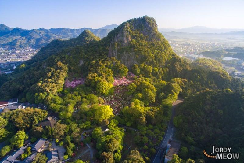 An Avalanche of Azaleas: Stunning Photos of Japan's Mifuneyama Park