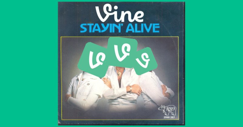 vinestayinalivefeat