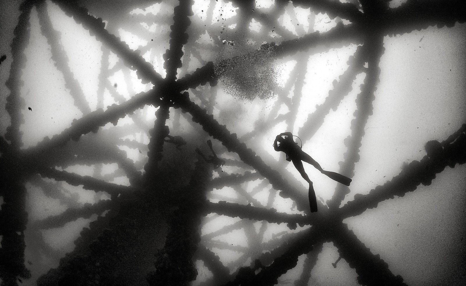 Photos of a Diver Under an Oil Rig