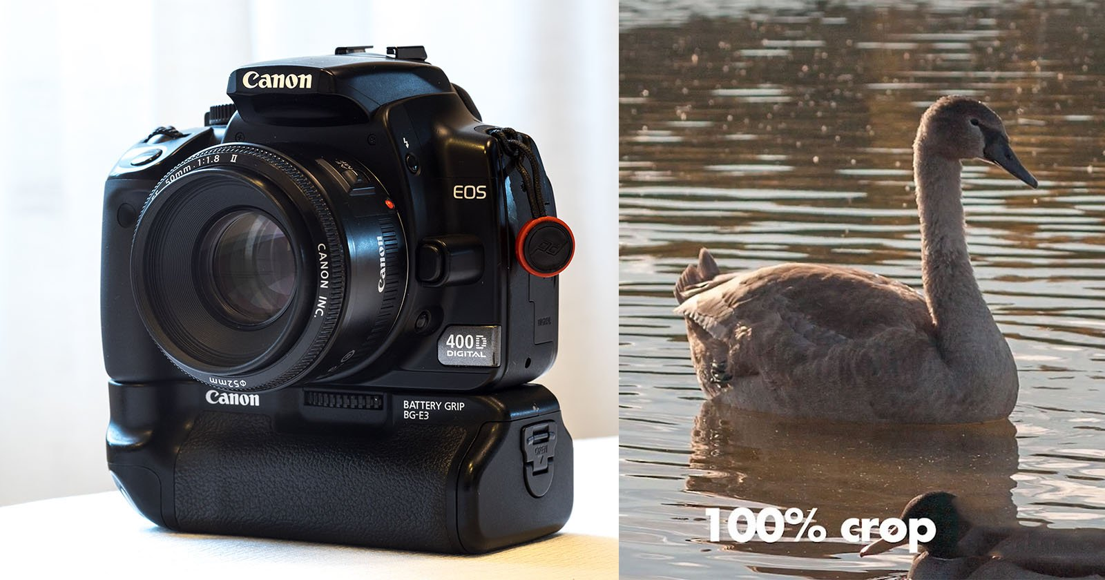 Buying a Used DSLR Kit for $80: Here's What You Get for the