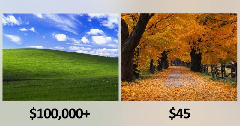 foto de Microsoft Paid 'Bliss' Photog $100K+ and 'Autumn' Photog $45