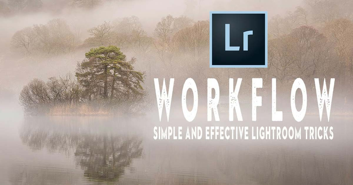 Lightroom Tricks for Organizing Photos and Optimizing Workflow