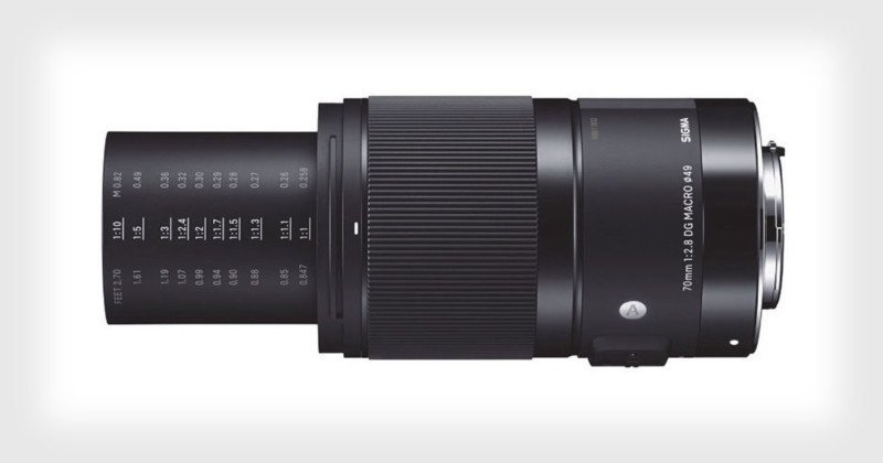 Review: The Sigma 70mm f/2.8 Art is a Macro Lens Worthy of Your Bag