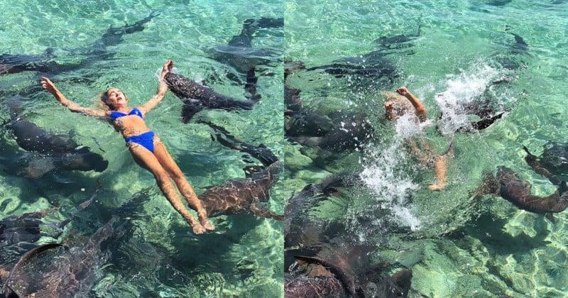 Instagram Model Bitten by Shark During Photo Shoot
