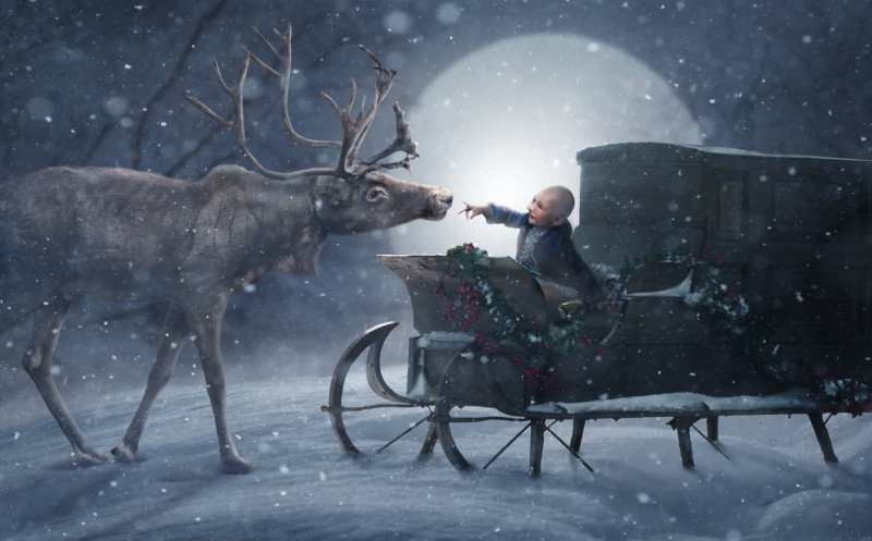 Photographers Visit 200  Sick Kids in Hospitals for Magical Christmas Photos