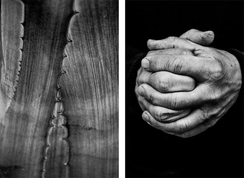 Was ist Parallelität und wie können Sie damit Ihre Fotografie verbessern?