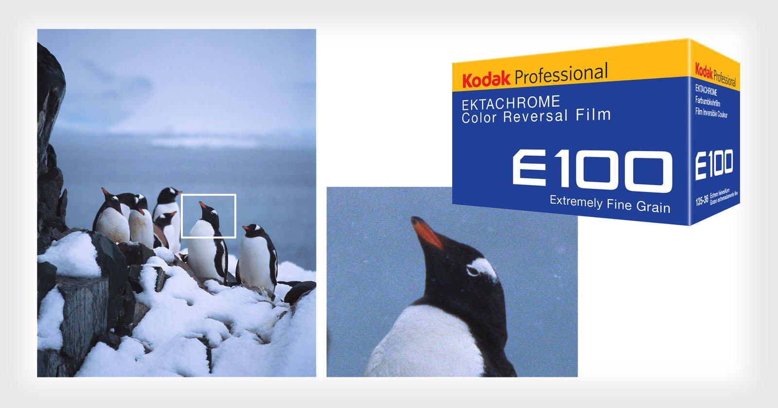 A Review of 35mm Kodak Ektachrome E100 Film