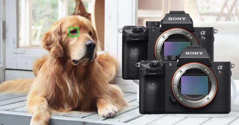 Sony a7/a7R III Firmware v3 Adds Real Time Eye AF, Animal Eye AF, Timelapse