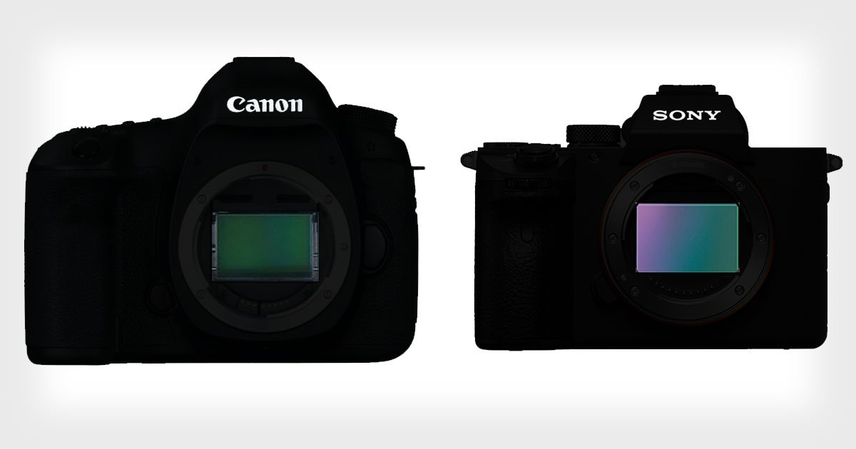 I Switched from Canon to Sony 4 Years Ago. Here Are 8 Things I've Learned.
