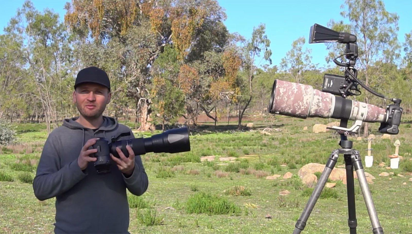 $20,000 vs $2,000: Can You Shoot Professional Bird Photos on a Budget?