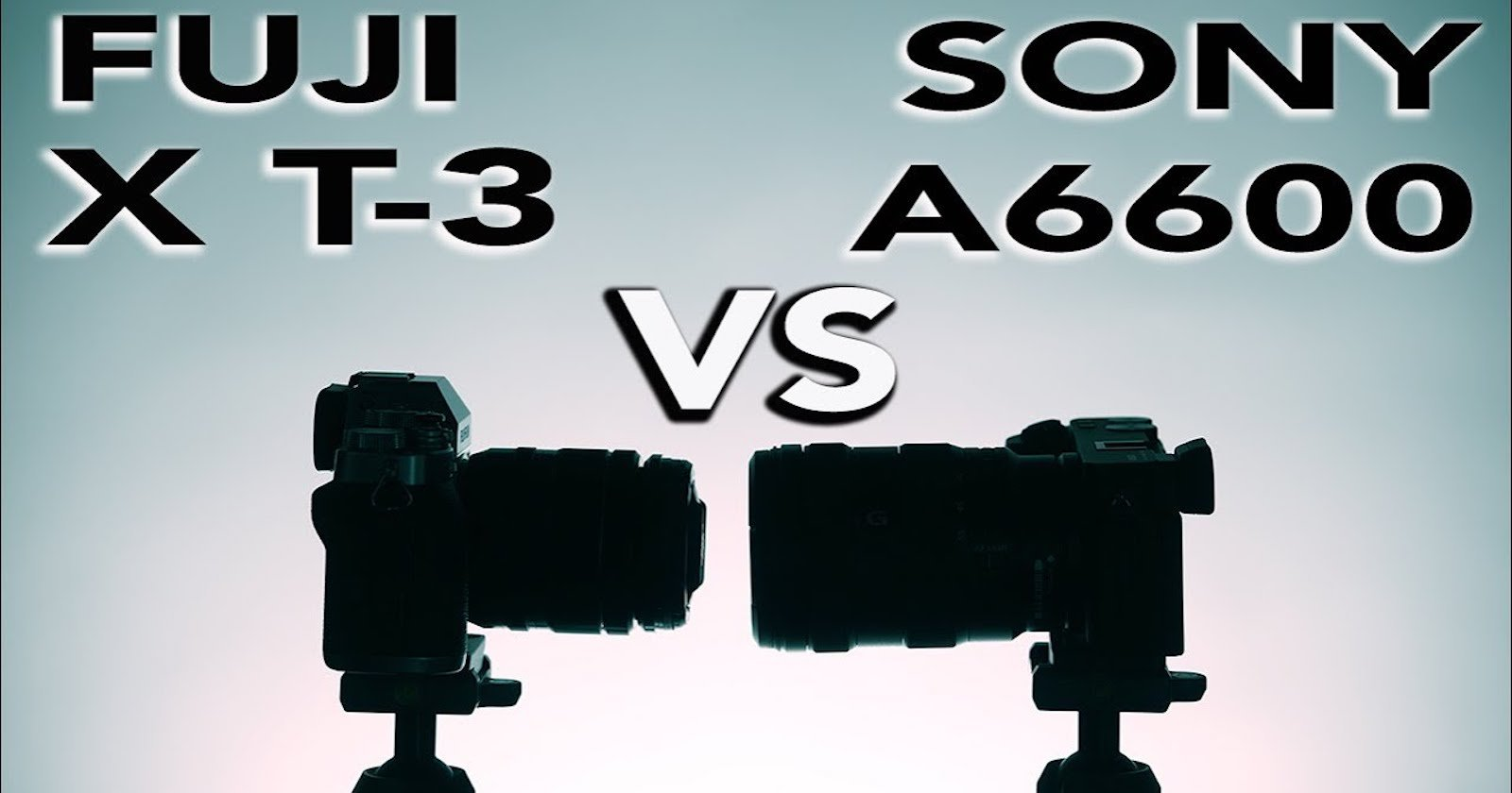 Fuji X-T3 vs Sony a6600: Comparing Autofocus, High ISO and More