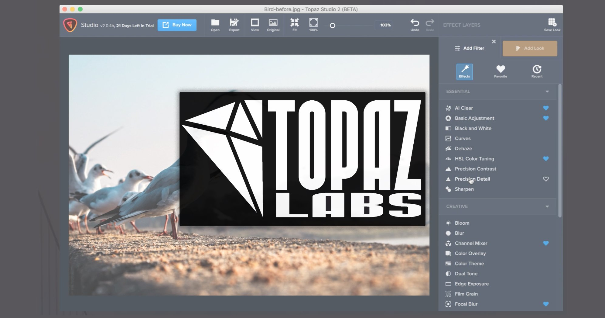 Topaz Labs Says It Will Start Charging for Product Updates, Sparks Outrage