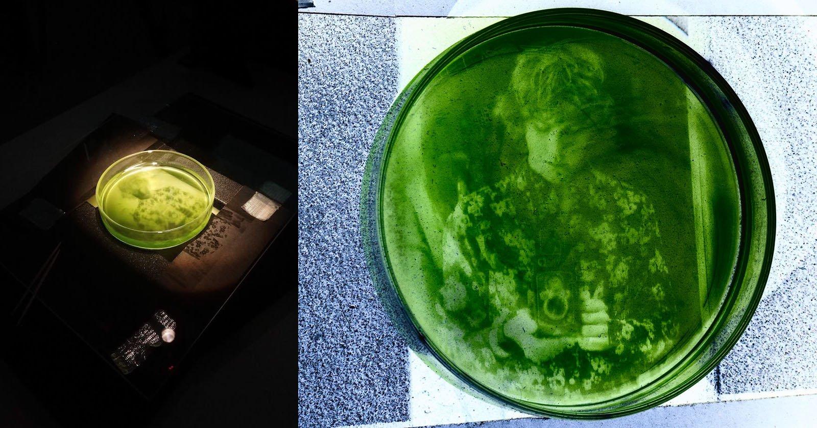 This Photographer is Printing Photos on Algae