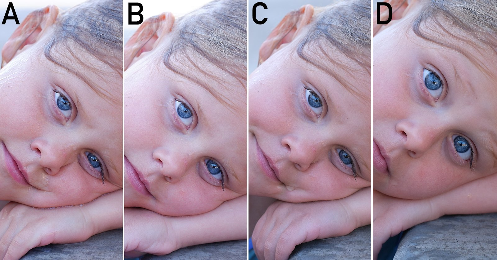 Blind Test: Fujifilm X-Trans vs Bayer Filter, Which is Better? - PetaPixel