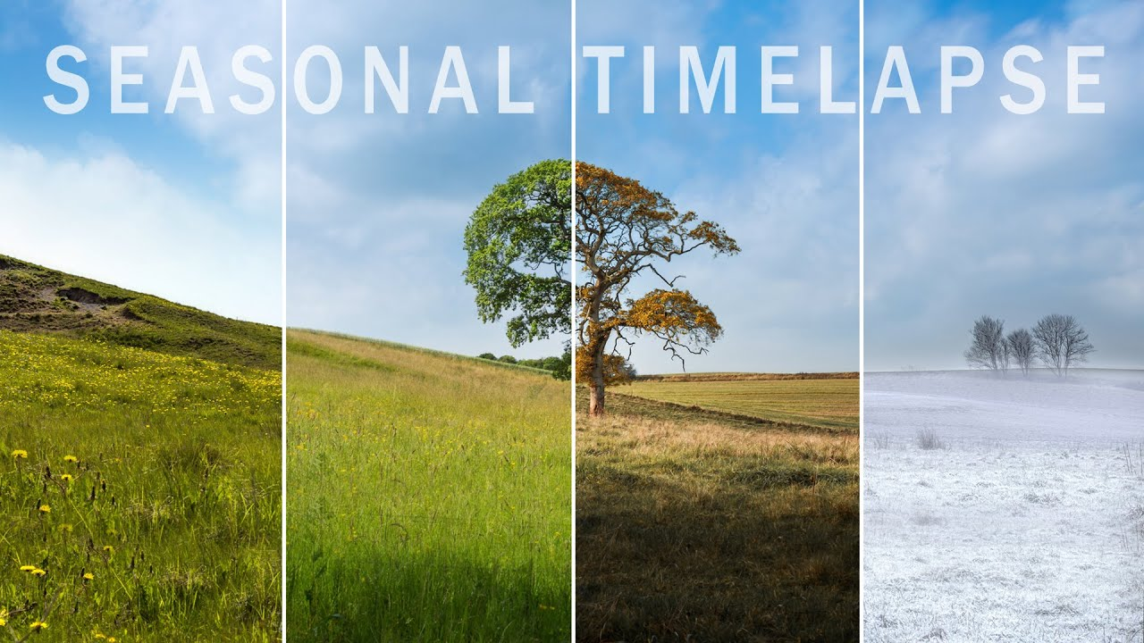 This Beautiful Four Seasons Time-Lapse Took 3 Years to Shoot