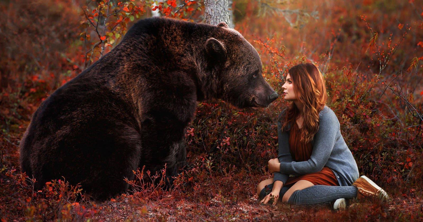How I Created a Magical Bear Photo