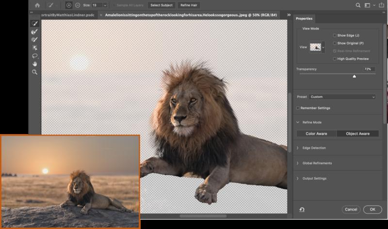 Photoshop Intelligent Refine Edge 1