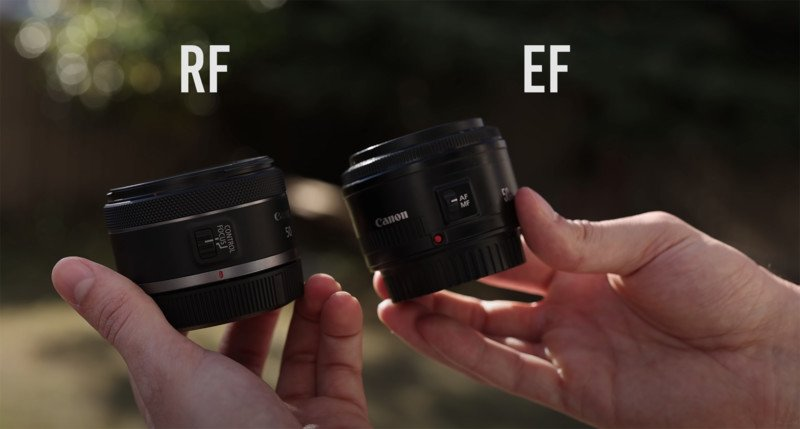 Photographer Reviews the RF 50mm f/1.8 STM on the Canon EOS RP 5
