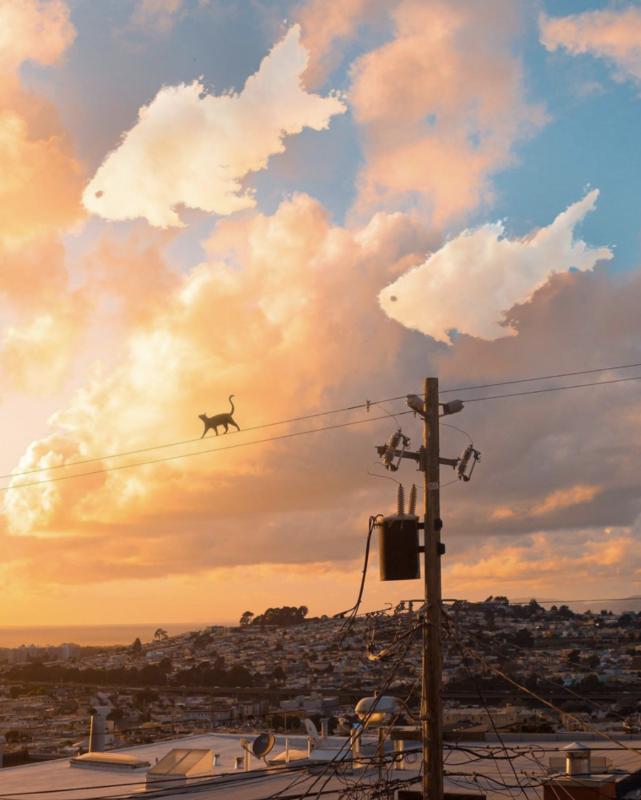 Câu chuyện của nhiếp ảnh gia phía sau bức ảnh ảo diệu được chọn làm màn hình chờ của Photoshop 2021 - Ảnh 12.