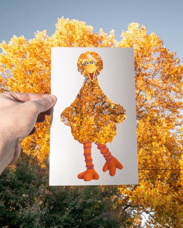This Artist Cleverly Fills Photo Cutouts with Real-World Scenes