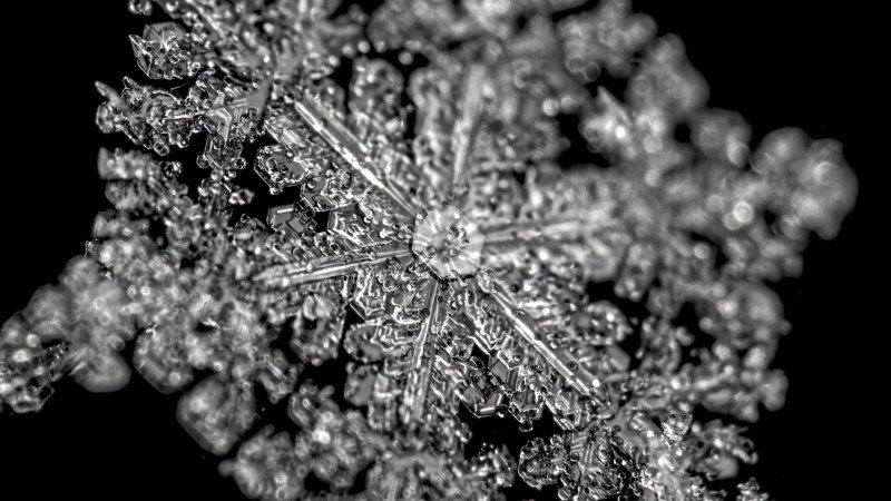 How to Easily Capture High-Detail Snowflake Photos at Home