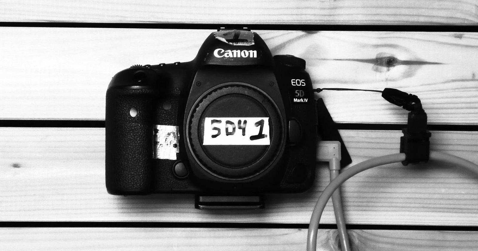 La reflex digitale: una revisione a lungo termine della Canon 5D Mark IV
