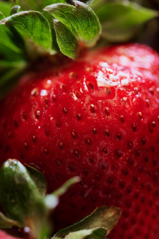 Food Photographer Reviews Nikon's 105mm f/2.8 Macro Z-Mount Lens