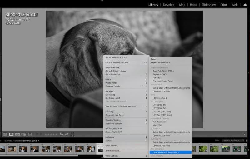 DxO Unveils NIK Collection 4: New Meta Presets, Improved U Point Tech 21