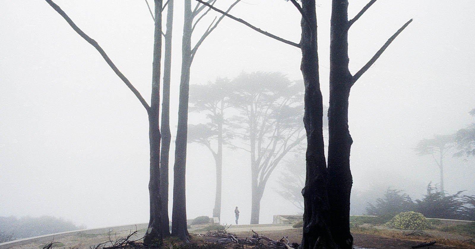 Film Photo Series celebra la bellezza naturale della nebbia di San Francisco