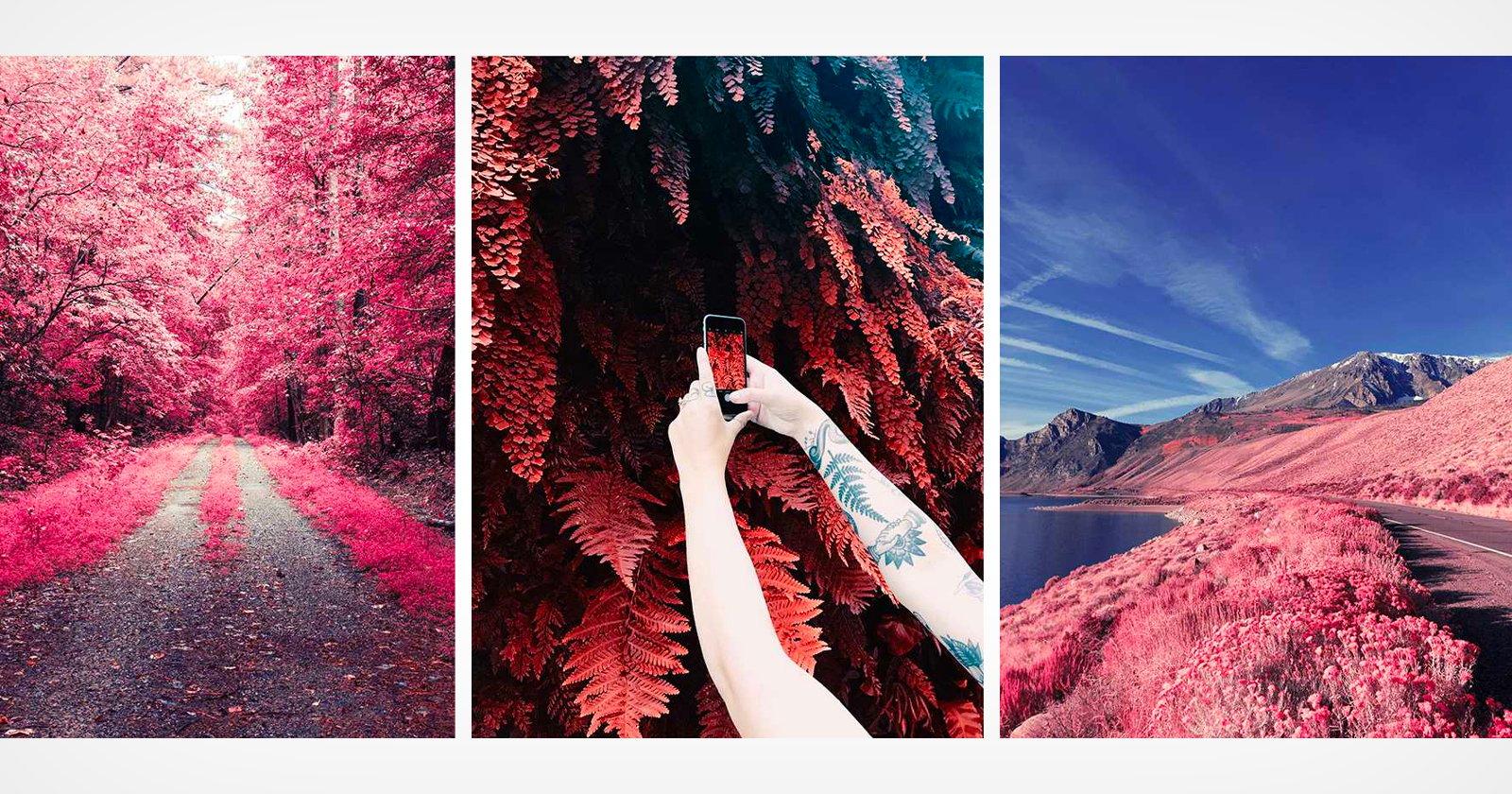 VSCO lancia un nuovo set di filtri che simulano la fotografia a infrarossi