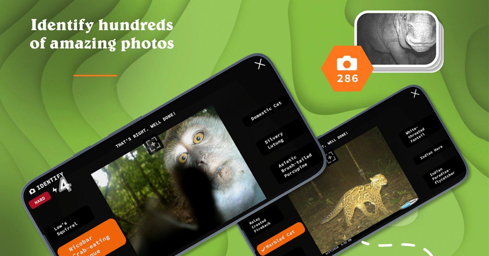 Il più grande studio sulla fauna selvatica delle trappole fotografiche è ora un gioco mobile gratuito