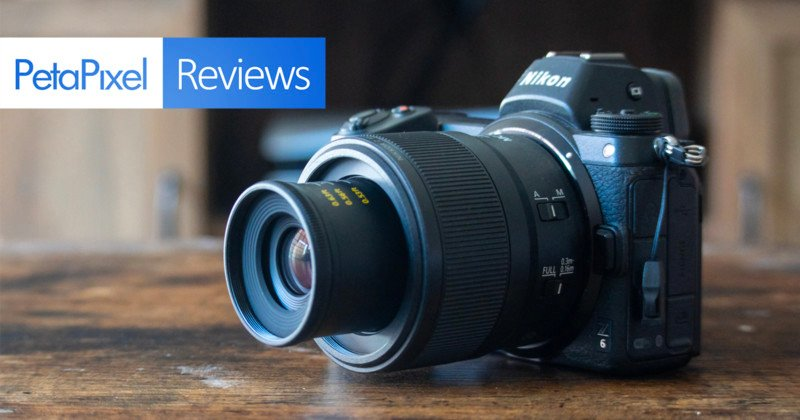 Nikon Z MC 50mm f/2.8 Macro Lens Review: A Solid Introduction to Macro
