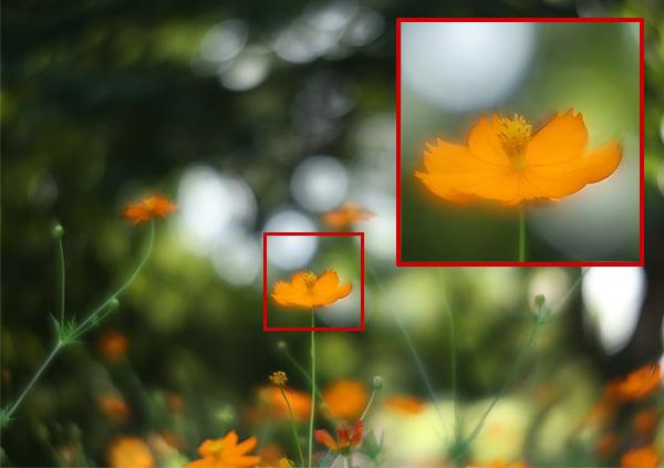 How Aspherical Lenses Fix Aberrations and Improve Sharpness